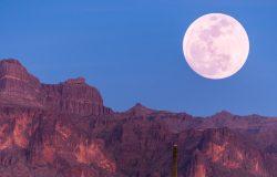 НАСА выделило $500 тысяч, чтобы отправить роботов-шахтеров на Луну